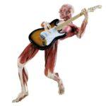 WBP_Guitarrist_02